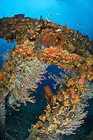 Wreck of the Rhone<br /> Salt Island<br /> British Virgin Islands