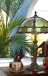 Antique lamp, leaves & desk