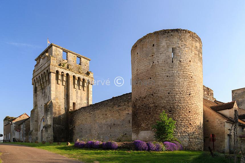 France, la Puisaye, Yonne (89), Druyes-les-Belles-Fontaines, le château // France, the Puisaye, Yonne, Druyes-les-Belles-Fontaines, the castle