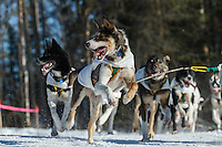 Cindy Abbott lead dogs on the trail during the Iditarod 2014 Ceremonial start in Anchorage, Alaska.<br /> <br /> Iditarod Sled Dog Race 2014<br /> PHOTO (c) BY JEFF SCHULTZ/IditarodPhotos.com -- REPRODUCTION PROHIBITED WITHOUT PERMISSION