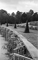 Potsdam, palazzo di Sanssouci. Terrazze dell'antico vigneto, con le nicchie vetrate per piante di fico, e piante potate --- Potsdam, Sanssouci palace. Ancient vineyard terraces with the glazed niches for growing figs, and pruned plants