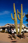 Seen in in Sun City, Arizona, an age-restricted city of more than 40,000 retirees, December 2011.