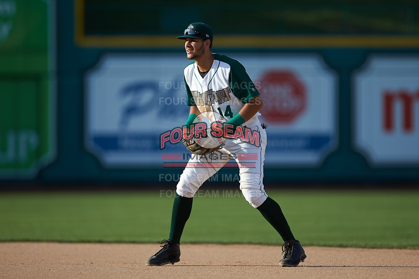 Fort Wayne TinCaps second baseman Justin Lopez (14) on defense against the Bowling Green Hot Rods at Parkview Field on August 20, 2019 in Fort Wayne, Indiana. The Hot Rods defeated the TinCaps 6-5. (Brian Westerholt/Four Seam Images)