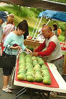 Selecting papayas at the Kapi'olani Community College farmers market on O'ahu.