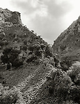 There are scores of  deep gorges in Crete.  One of the prettiest isTherisso Gorge.