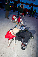 Rookie musher Chris Adkins crashes on the ground at the finish line in Nome after finishing in 50th place during the 2010 Iditarod