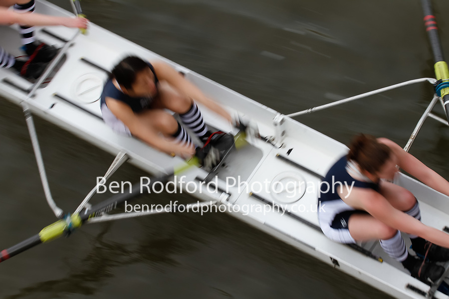 Crew: 152 Cantabrigian Rowing Club D<br /> <br /> Women's Head of the River (WeHoRR) 2017<br /> <br /> To purchase this photo, or to see pricing information for Prints and Downloads, click the blue 'Add to Cart' button at the top-right of the page.