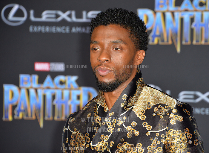 """Chadwick Boseman at the world premiere for """"Black Panther"""" at the Dolby Theatre, Hollywood, USA 29 Jan. 2018<br /> Picture: Paul Smith/Featureflash/SilverHub 0208 004 5359 sales@silverhubmedia.com"""