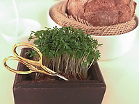 Potato bread with herbs to cut at Ecco St Moritz. Photo Sydney Low