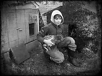 Young boy with chicken kneels next to chicken coop. iPhone photo. Manipulated image