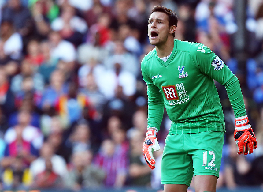 Crystal Palace's Alex McCarthy<br /> Photographer Kieran Galvin/CameraSport<br /> <br /> Football - Barclays Premiership - Crystal Palace v Manchester City - Saturday 12th October  2015 - Selhurst Park - London<br /> <br /> &copy; CameraSport - 43 Linden Ave. Countesthorpe. Leicester. England. LE8 5PG - Tel: +44 (0) 116 277 4147 - admin@camerasport.com - www.camerasport.com