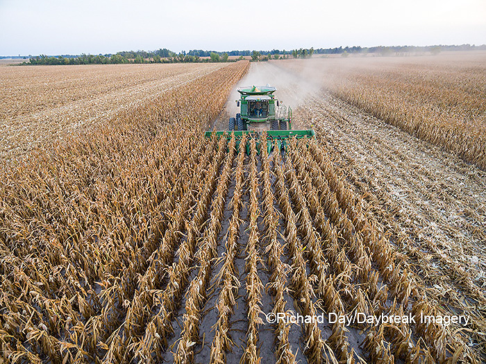 63801-08506 Corn Harvest, John Deere combine harvesting corn - aerial Marion Co. IL