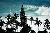 USA, Hawaii, Oahu, surfers riding a wave at Waimea Bay with palm trees in foreground, North Shore