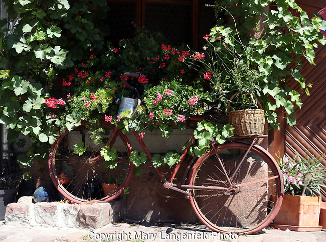 Decorated bicycle in front of Alsace, France shop