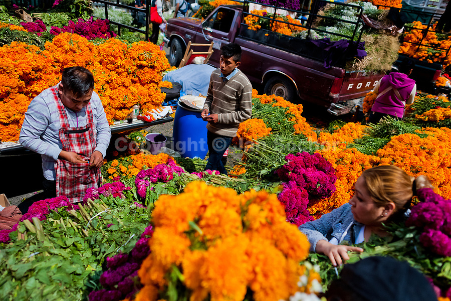 Mexican flower market vendors sell piles of marigold flowers (Flor de muertos) for Day of the Dead festivities in Mexico City, Mexico, 31 October 2016. Marigold flowers (Cempasúchil) are used to adorn graves and altars during the Day of the Dead (Día de Muertos). A syncretic religious holiday, combining the death veneration rituals of the ancient Aztec culture with the Catholic practice, is celebrated throughout all Mexico. Based on the belief that the souls of the departed may come back to this world on that day, people gather at the gravesites in cemeteries, praying, drinking and playing music, to joyfully remember friends or family members who have died and to support their souls on the spiritual journey.