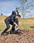 AUSTRALIA, Canberra : Netherlands Prime Minister Mark Rutte (L) plants a silver birch (Betula Pendula) at a ceremony with Australian Prime Minister Tony Abbott (R) at the National Arboretum in Canberra on November 7, 2014. Rutte is in Australia on an official two day visit. AFP PHOTO / MARK GRAHAM