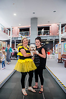 Thursday  21 July 2016<br /> Pictured: . Re: A teddy bears picnic takes place at Swansea Waterfront Museum to celebrate 10 years of Flying Start
