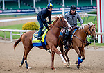 LOUISVILLE, KENTUCKY - APRIL 28: Improbable, trained by Bob Baffert, exercises in preparation for the Kentucky Derby at Churchill Downs in Louisville, Kentucky on April 28, 2019. Scott Serio/Eclipse Sportswire/CSM