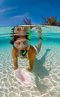 A woman find a queen conch shell while snorkeling in the crystal waters of Rainbow Beach, Eleuthera, Bahamas, Atlantic Ocean