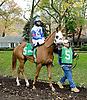 Nouveau Rich before The Delaware Park Arabian Classic Handicap at Delaware Park on 11/3/12...