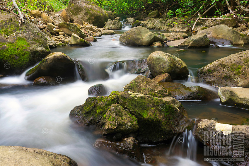 A flowing river with moss-covered rocks near Hawi, Hawai'i Island.