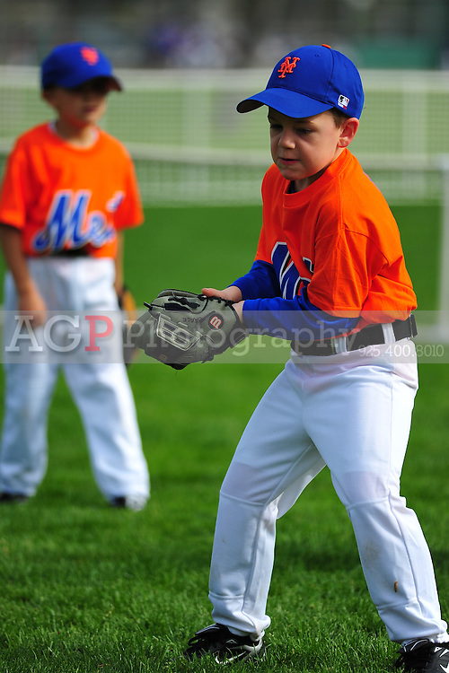 The Pleasanton National Little League T-Ball Mets play  at the Pleasanton Sports Park Saturday March 20, 2010. (Photo by Alan Greth)