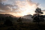 sunrise, morning, early, clouds, color, trees, forest, mountains, landscape, scenic, Rocky Mountain National Park, Colorado, Rocky Mountains, USA