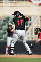 Tanner Kirk (17) of the Delmarva Shorebirds at bat against the Kannapolis Intimidators at Kannapolis Intimidators Stadium on July 2, 2017 in Kannapolis, North Carolina.  The Shorebirds defeated the Intimidators 5-4.  (Brian Westerholt/Four Seam Images)