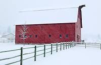 Barn with snow and fence. Near Joseph, Oregon