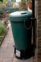 Waterbutt collects rainwater from the roof for use on garden..