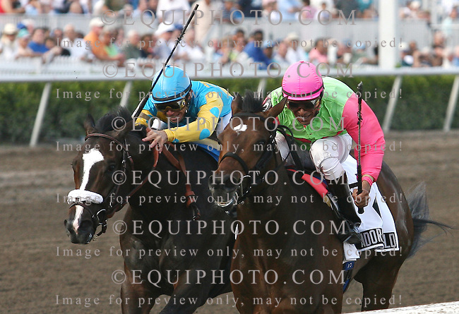 Adore The Gold #2 (R) with Cornelio Velasquez riding won the $150,00 Swale Stakes over #6 Forefathers and Manoel Cruz at Gulfstream Park in Hallandale, FL on Saturday February 3, 2007. Photo By Bill Denver/EQUI-PHOTO.