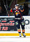 Stockholm 2014-02-24 Ishockey Hockeyallsvenskan Djurg&aring;rdens IF - S&ouml;dert&auml;lje SK :  <br /> Djurg&aring;rdens Michael Holmqvist jublar efter att ha gjort 2-0 i den andra perioden<br /> (Foto: Kenta J&ouml;nsson) Nyckelord:  jubel gl&auml;dje lycka glad happy