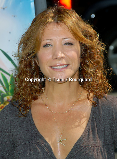 Cheri Oteri arriving at the ANT BULLY Premiere at the Chinese Theatre In Los Angeles. July 23, 2006.<br /> <br /> eye contact<br /> headshot<br /> smile