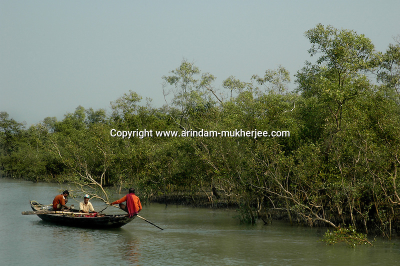 A group of men going inside the forest to catch fish and crab. A man can earn upto 3 usd on a lucky day. Sunderban, West Bangal, India. April 2011. Arindam Mukherjee