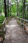 Hiking Trail in Estuary in Rachel Carson National Wildlife Refuge