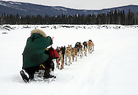 Peter Bartlett kneels on his runners as his teams runs down the Kuskokwim river shortly before McGrath on Wednesday