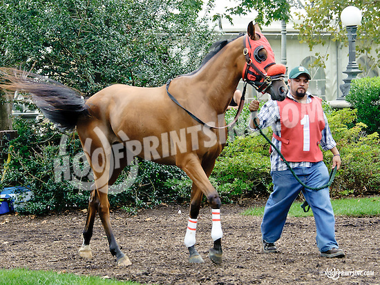 Royal Richess before The Cre Run Oaks (gr 2) at Delaware Park on 9/1/14