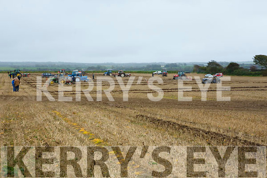 At the Abbeydorney Ploughing Match on Sunday