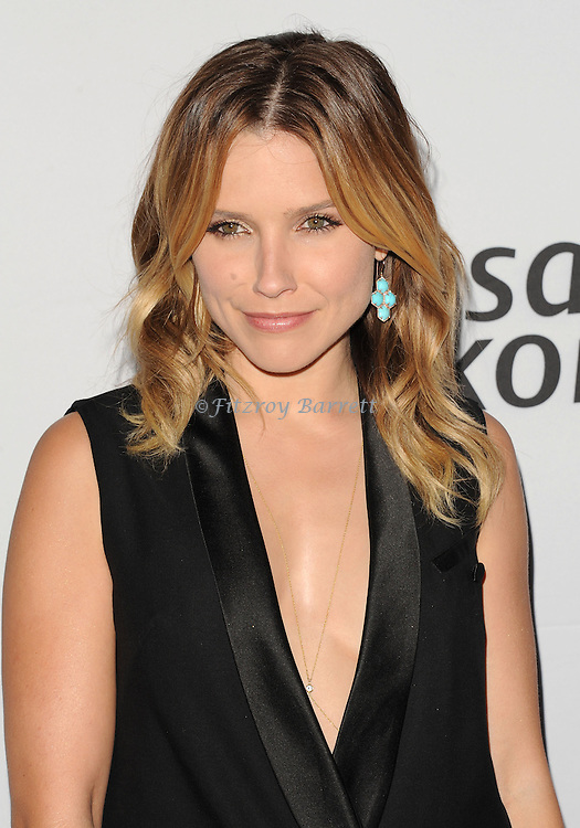 Sophia Bush at the Pathway To The Cure for Breast Cancer A fundraiser benefiting Susan G. Komen held at private hangar at Santa Monica Airport Los Angeles, CA. June 11, 2014.