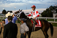 January 17, 2015::International Star ridden by Miguel Mena wins the Lecomte Stakes at the New Orleans Fairgrounds course. Steve Dalmado/ESW/CSM