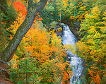 Pictured Rocks National Lakeshore, MI<br /> Chapel Falls flowing through a lightly fall colored forest