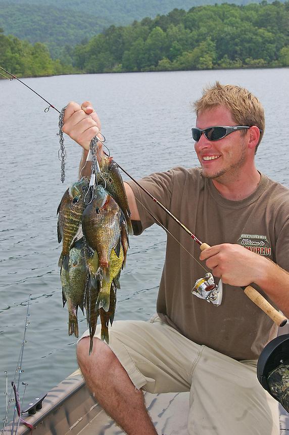 Angler with stringer of bluegills, Lake Ouachita, Arkansas