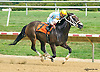 Flying Slew winning at Delaware Park on 8/29/15