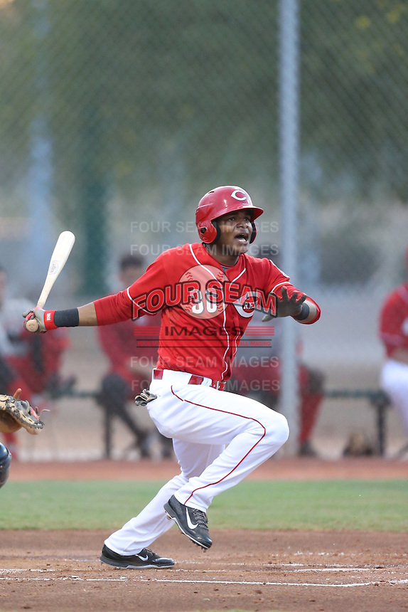 Reydel Medina #30 of the AZL Reds bats against the AZL Brewers at the Cincinnati Reds Spring Training Complex on July 5, 2014 in Goodyear Arizona. AZL Reds defeated the AZL Brewers, 7-2. (Larry Goren/Four Seam Images)