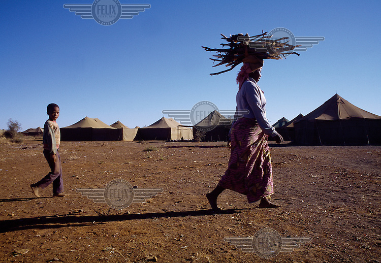 A San woman carries firewood on her head at the Schmidtsdrift army camp traditional lands of the !Xun and Khwe people.