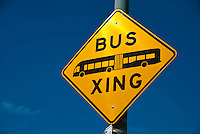 Orange Line, Double Bus, Crossing, Bus Rapid Transit Line, Los Angeles, County, Metro Liner, System
