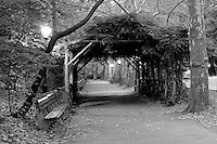 Walkway with lamp post in New York's Central Park.