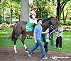 Onepointhreekarats before The Unbridled Belle Stakes at Delaware Park on 8/15/13