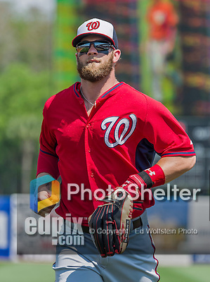 20 March 2015: Washington Nationals outfielder Bryce Harper returns to the dugout during Spring Training action against the Houston Astros at Osceola County Stadium in Kissimmee, Florida. The Nationals defeated the Astros 7-5 in Grapefruit League play. Mandatory Credit: Ed Wolfstein Photo *** RAW (NEF) Image File Available ***