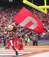 Brutus Buckeye celebrates another Buckeye touchdown  at Memorial Stadium in Champaign, Illinois on November 16, 2013.  (Chris Russell/Dispatch Photo)